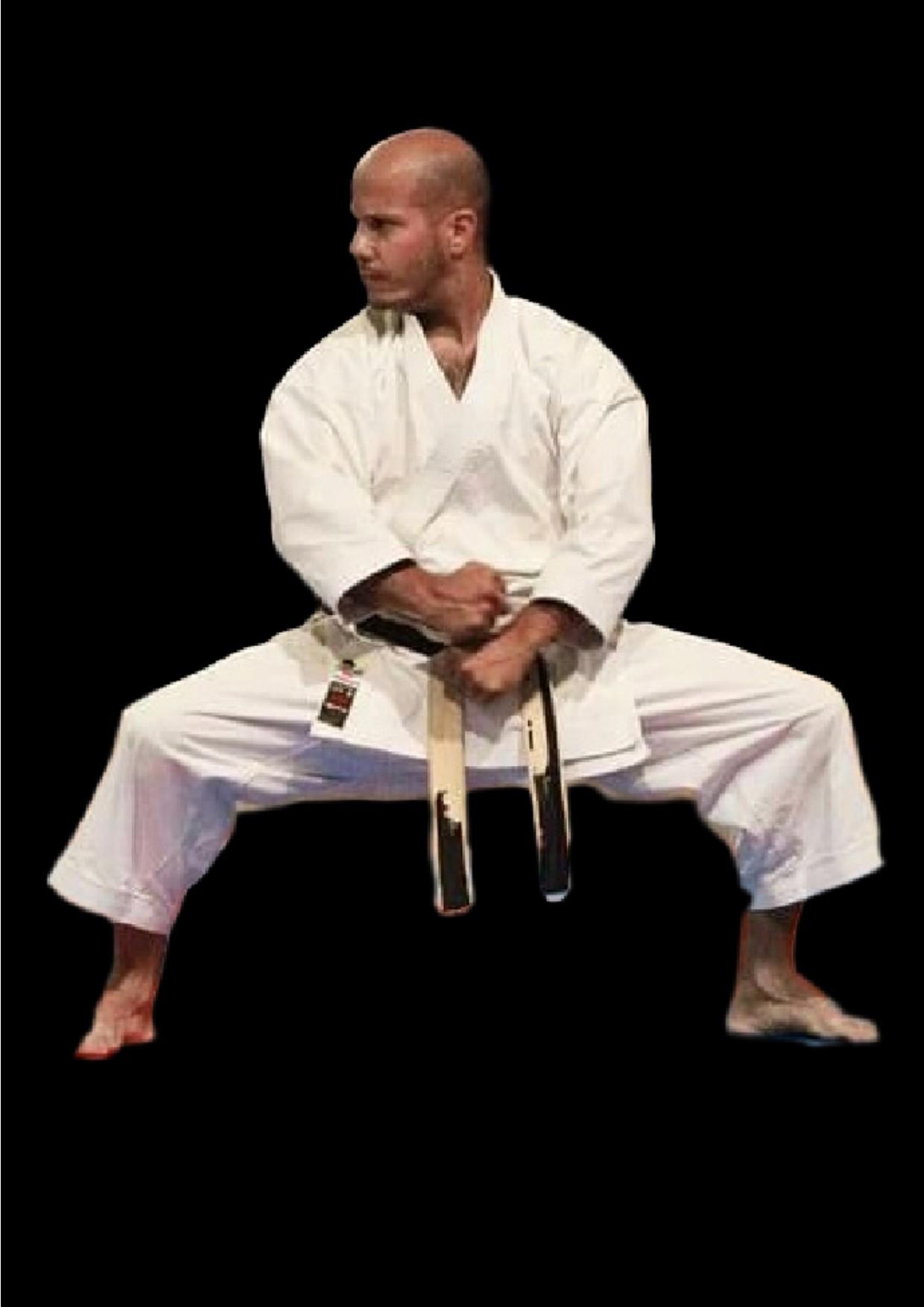 association fran aise de karate do goju ryu d 39 okinawa clubs. Black Bedroom Furniture Sets. Home Design Ideas
